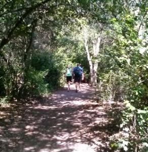WoodPath Walk